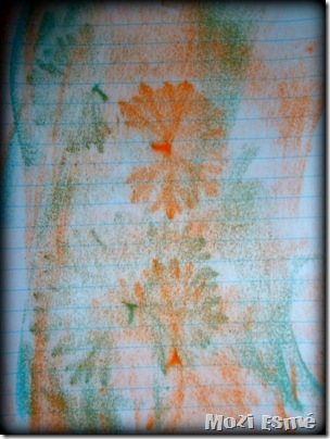 Leaf Rubbings3
