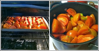 Many Waters Cooking Tomatoes