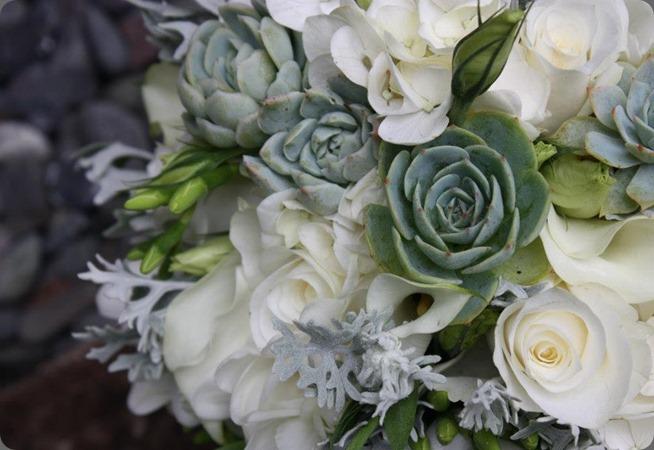 305085_10151188559800152_1029143956_nv flora organica designs