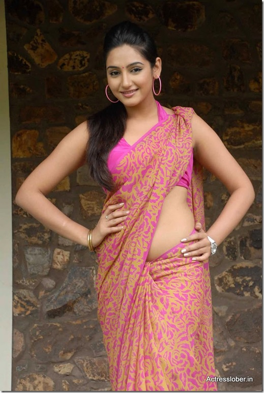 Ragini  Dwivedi Hot Saree South Actress (6)