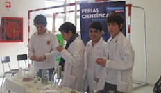 Feria cientfica en la Escuela Repblica Alemania Federal