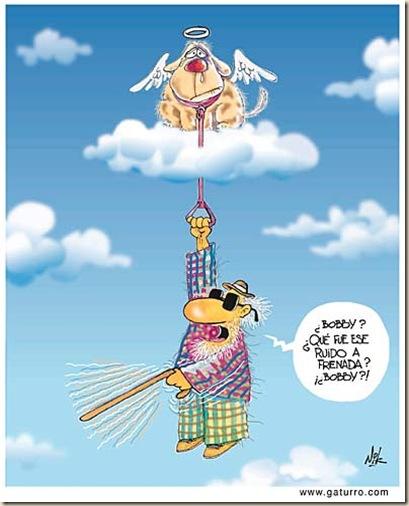 cielo paraiso humor ateismo biblia grafico religion dios jesus (17)