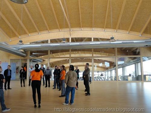 madera-laminada-edificio-eficiente (7)