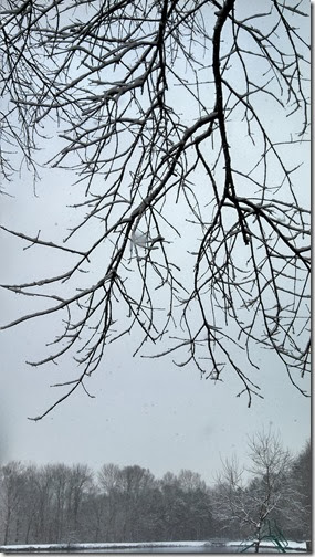 Snow 02 (9)