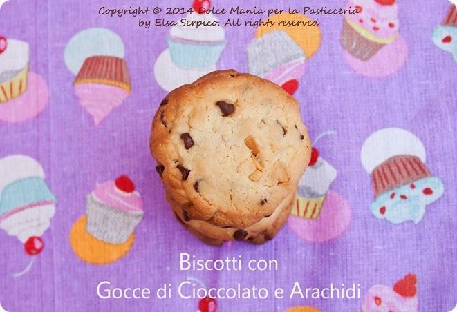 Biscotti-con-cioccolato-e-arachidi-2