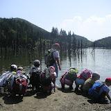 La Lacul Cuejdel