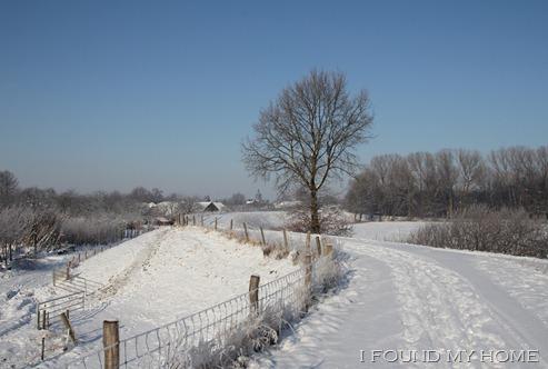 sneeuw Febr 2012 041
