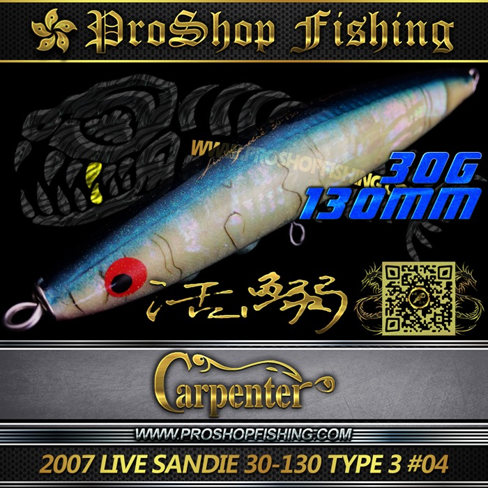 carpenter 2007 LIVE SANDIE 30-130 TYPE 3 #04.1