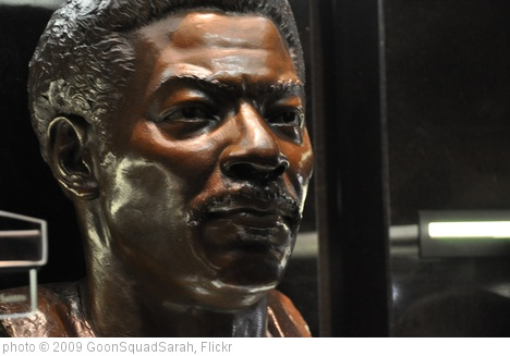 'Bust of Lee Roy Selmon' photo (c) 2009, GoonSquadSarah - license: http://creativecommons.org/licenses/by-nd/2.0/