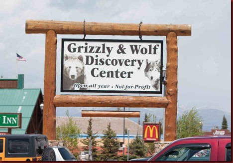 Grizzly sign (1 of 1)