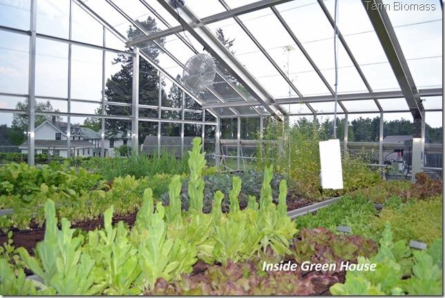 Froling FHG Inside Green House 2