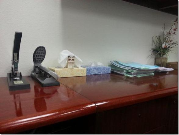 grumpy-cat-office-8