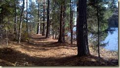 03 lake trail