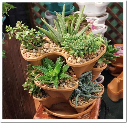 120321_SF_Flower Garden_Show_202