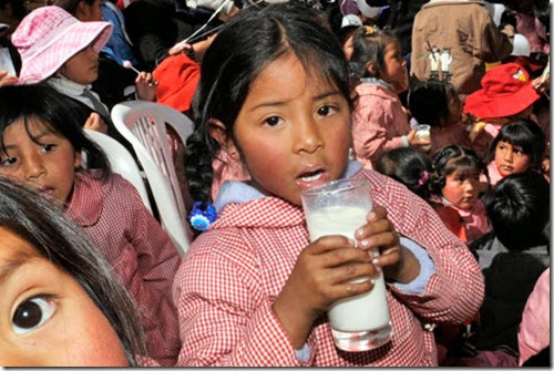 La leche en Bolivia
