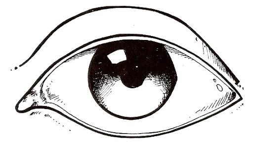 Dibujos del ojo para colorear - Imagui