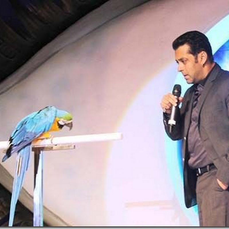 Salman Khan with Parrot at Bigg Boss 6!