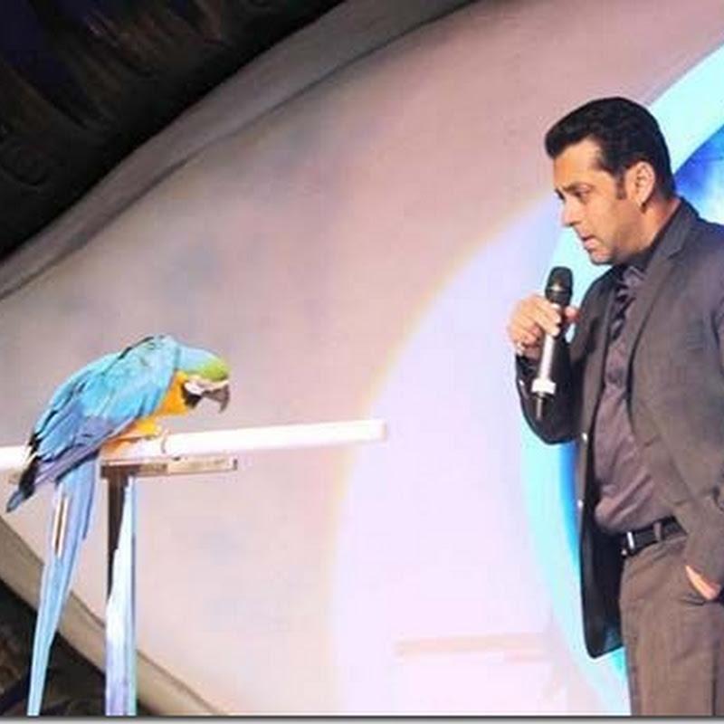 Salman Khan with Parrot at Bigg Boss 6!