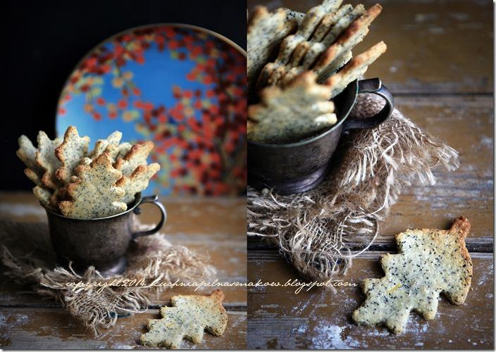migdałowe ciasteczka z makiem i skórką z cytryny- Sarah Wilson1