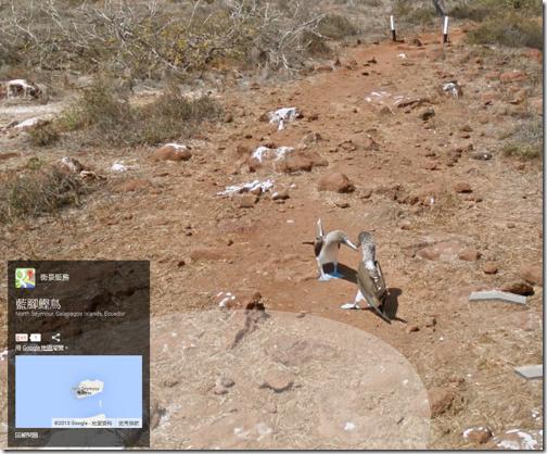 google maps street view-06