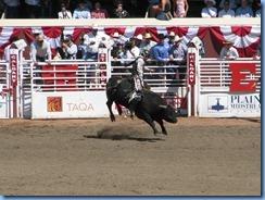 9489 Alberta Calgary - Calgary Stampede 100th Anniversary - Stampede Grandstand - Calgary Stampede Bull Riding Championship