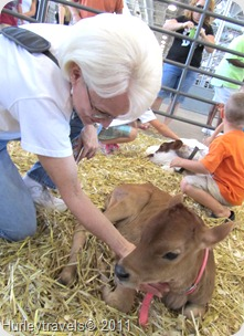 Marti enjoying a visit with a calf at the Indiana State Fair.