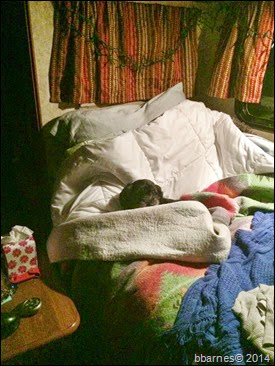 Maggie bedtime 122014