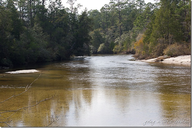 blackwater river2_edited-1