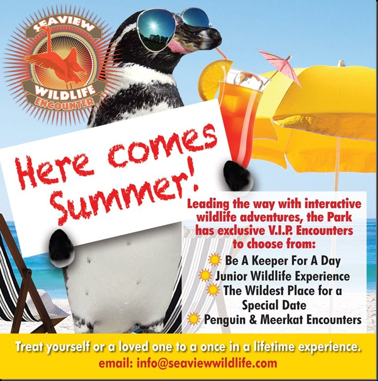 SWLE Summer ad web