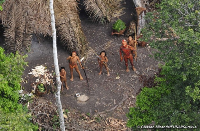Aerial view of an uncontacted tribe in the Peruvian amqazon. The tribe is believed to have taken refuge in Brazil after escaping Peru, due to illegal logging and drug trafficking, occurring in the country. Photo: Gleison Miranda / FUNAI