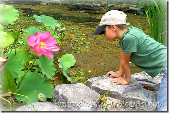 Dan at the Pond