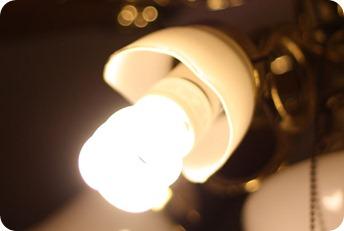 olivia and light 0890089