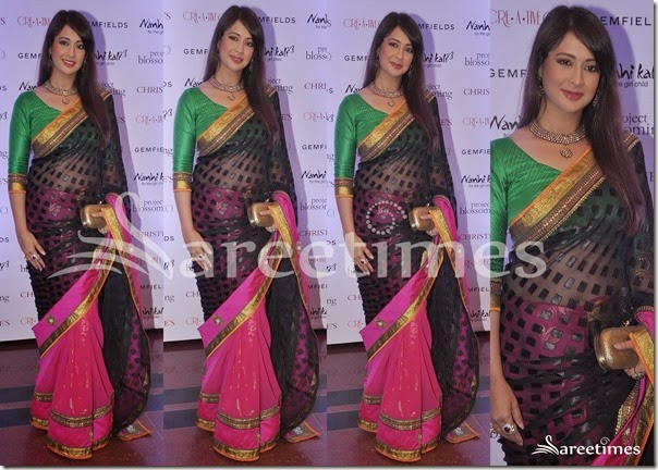 Preethi_Jingyani_Half_and_Half_Saree