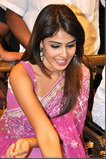 genelia-hot-saree-stills-10