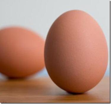 Tratamientos para el Cabello con Huevo2