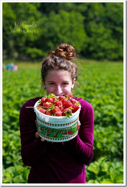 strawberryfields-4964