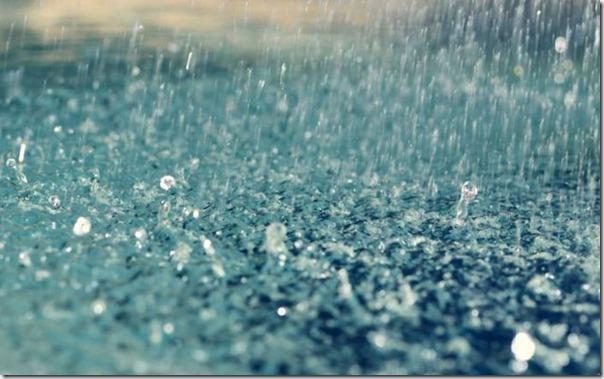 Lindas fotos da chuva (22)
