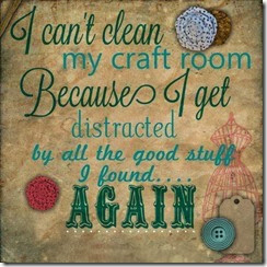 I cant clean my craft room