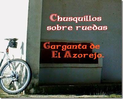 chq azorejo