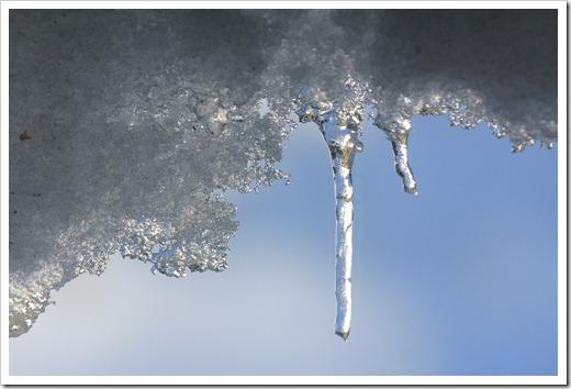121224_snow_014