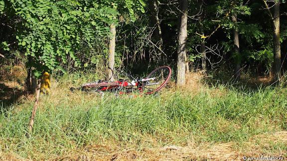 Asa s-au odihnit bicicletele