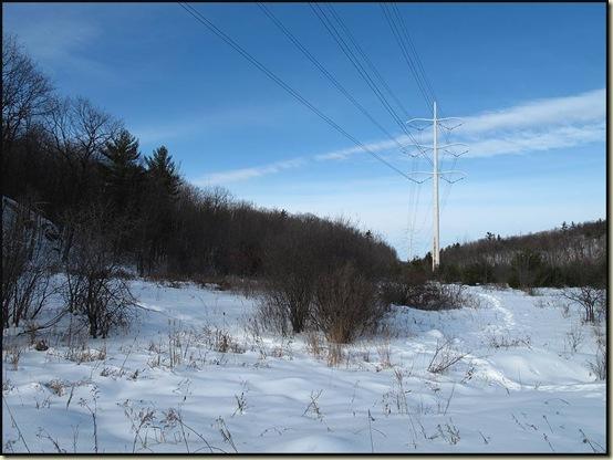 Pylons across trail 5