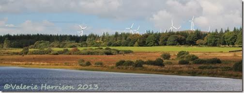 11-wind-farm
