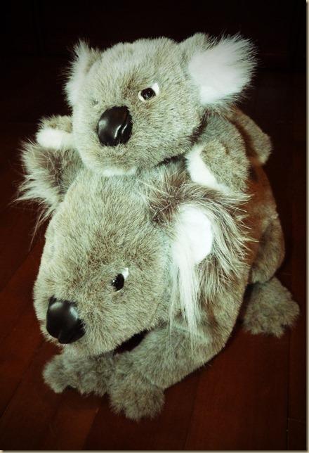 Koala Bear Puppets 2