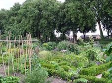 2014.07.19-058 jardin des plantes