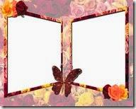 PNG frame (37)