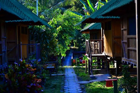 Jungla amazoniana Ecoamazonia Lodge