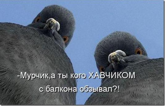 7210d56678ba27335e8c9d9bd7c_prev