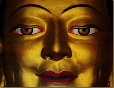 Tibet CAN D1 018