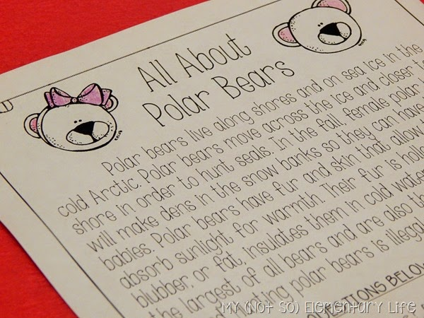 Polar Bear Reading Comprehension Passage